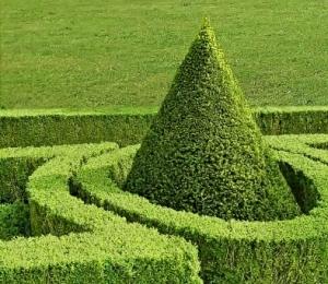 Wurde der Schatz im Schlossgarten versteckt?