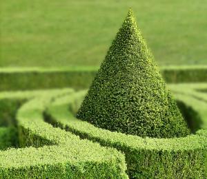 Wurde im Schlossgarten womöglich ein Schatz  versteckt?