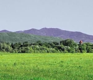 Das Markgräflerland: Burgen, Schlösser, Weingenuss.